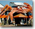 The Giant Crab Seafood Buffet may have a cartoon-ish logo, and a crazy decor, but it all adds to the fun!
